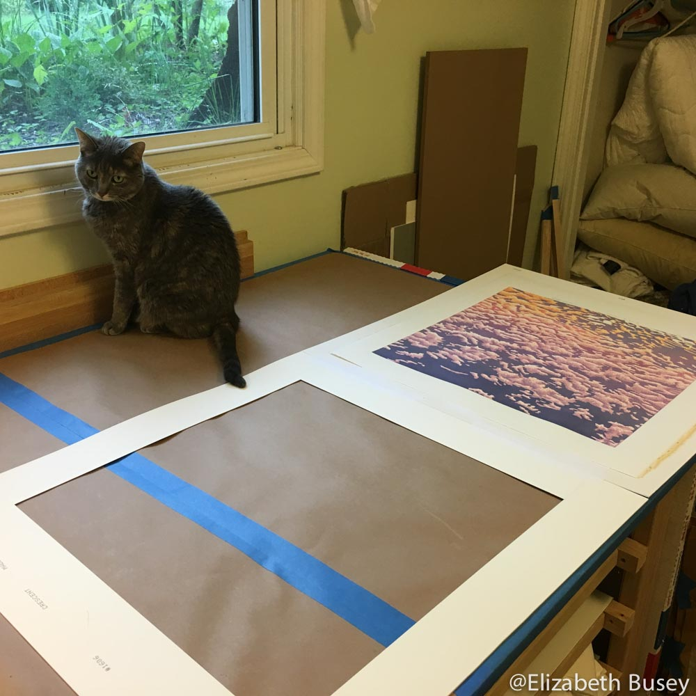 gingersnap on the framing table