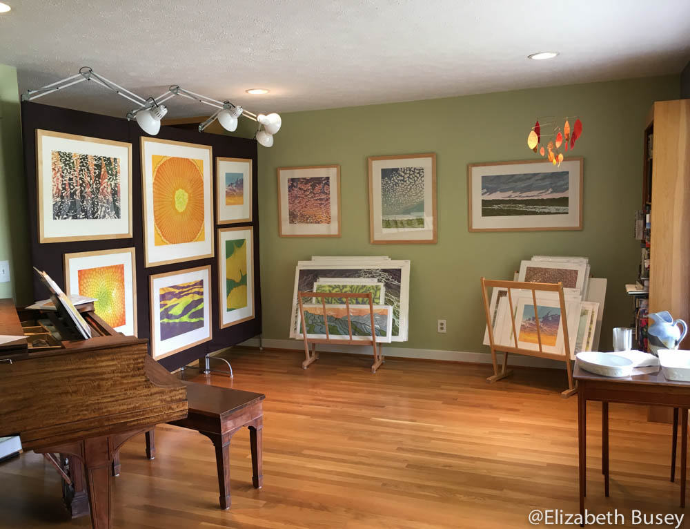 Opening up the studio and the house elizabeth busey for Living room 2016