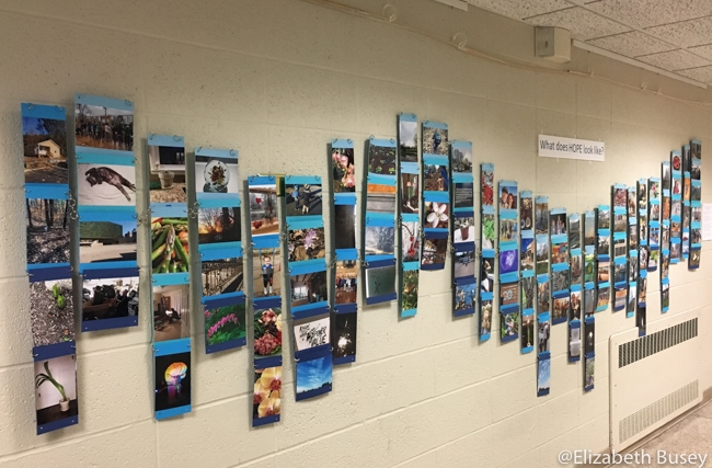 wave of photographs on blue paper
