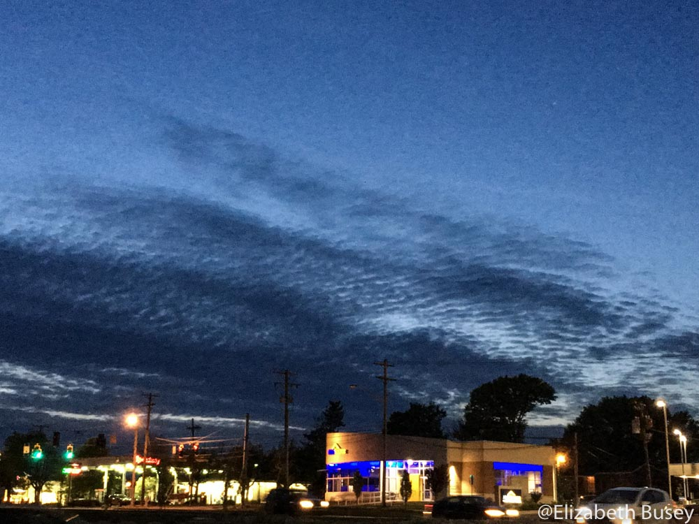Fingerprint cloudscape