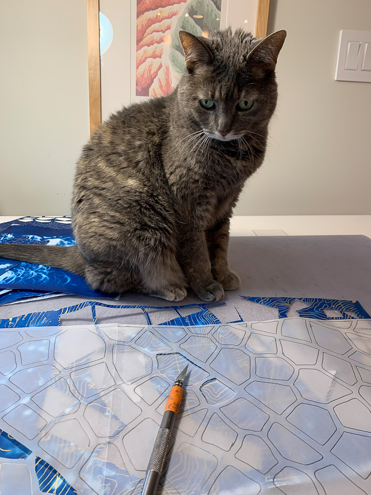 cat sitting on drawing table exact knife collage materials